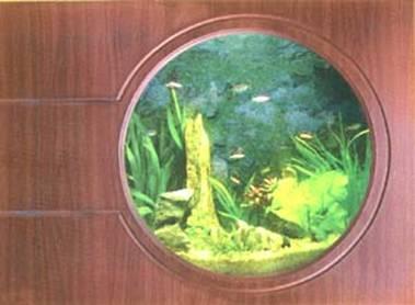 becatreotuong4 Bể cá treo tường theo phong thủy