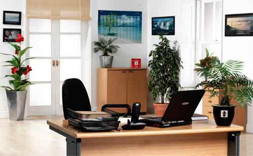 file.3928401 Phong thủy sắp xếp bàn làm việc