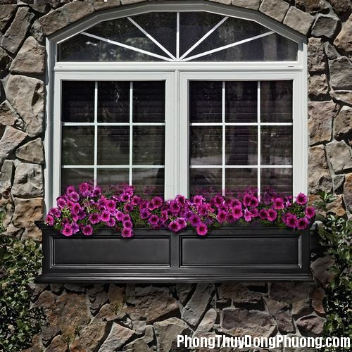 0B0 huongcuaso Hướng mở cửa sổ liên quan trực tiếp đến nhà ở