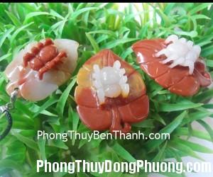 Hoang long tam the nhen 03 300x250 Tử vi Phương Đông: Thứ ba 22/7/2014