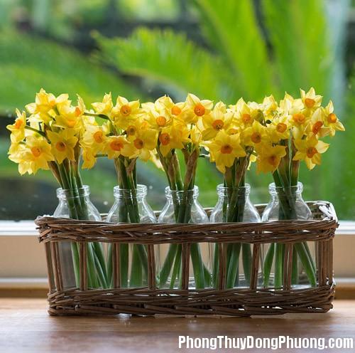 222 hoapt4 Những loại hoa mang ý nghĩa tốt lành trong phong thủy