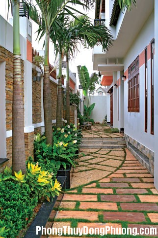 cay xanh trong vuon 1 Tư vấn chọn cây cối phù hợp cho sân vườn