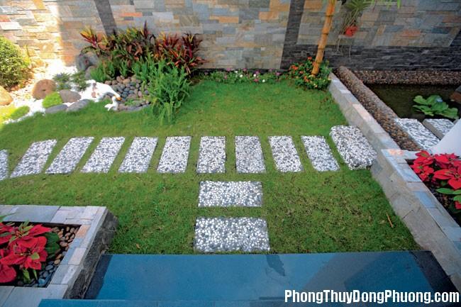 cay xanh trong vuon 3 Tư vấn chọn cây cối phù hợp cho sân vườn