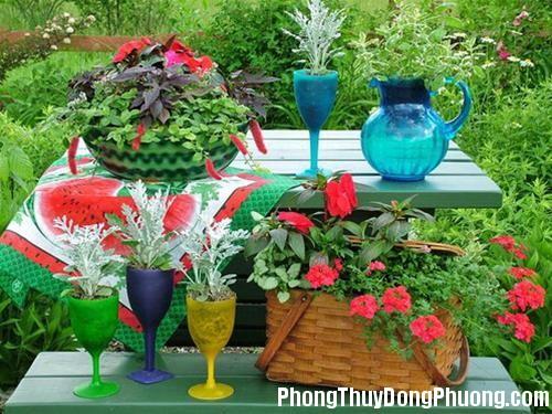 anh 6 Nguyên tắc phong thủy trong bài trí sân vườn