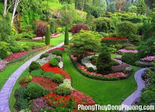 950 v4 Phong Thủy cho khu vườn