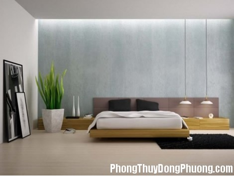 a56 Lưu ý khi trồng cây cảnh trong phòng ngủ