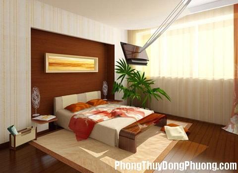 a57 Lưu ý khi trồng cây cảnh trong phòng ngủ