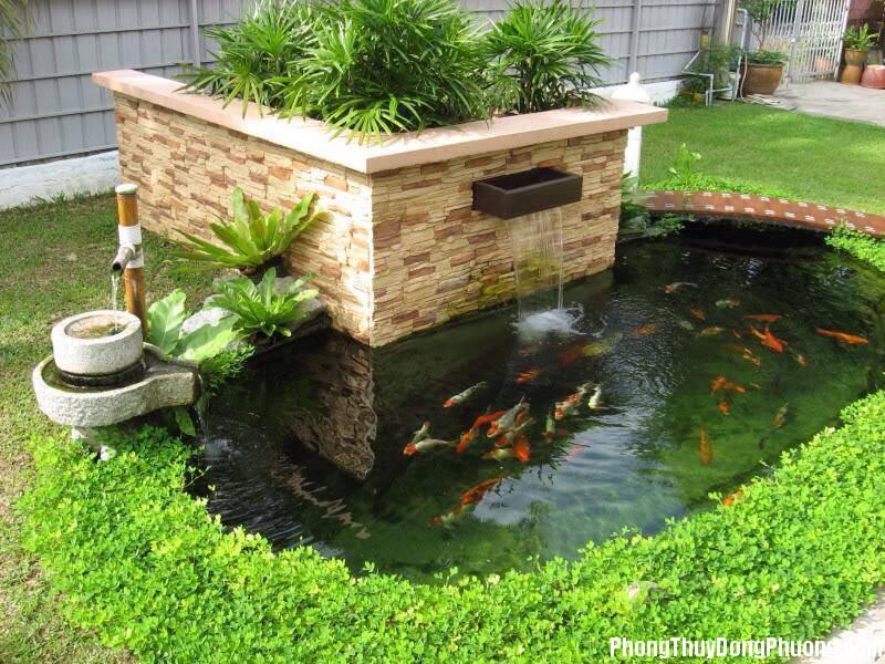 004706baoxaydung 3 Phong thủy cần biết khi chơi cá Chép