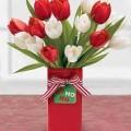 2049-tulip