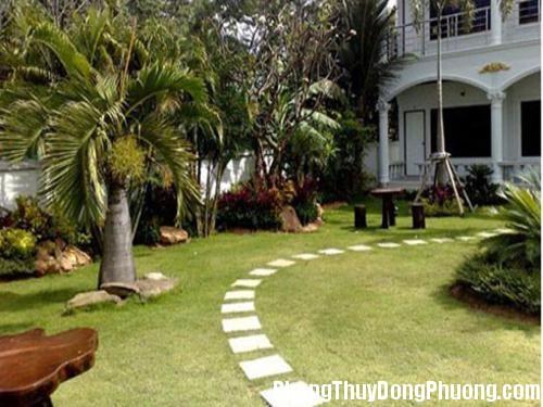 25 1 2013 phong thuy 2 mau 500x375 Phong thủy khuyên không nên lát đá cả sân vườn