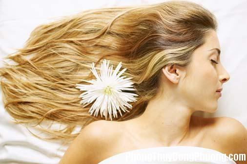 dau dua111 Giải mã các bí ẩn giấc mơ thấy mái tóc