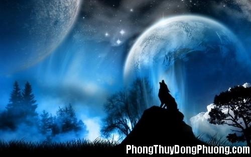 soi Giải mã các bí ẩn giấc mơ thấy hình ảnh con sói