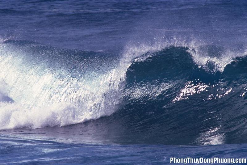 song bien Giải mã các bí ẩn giấc mơ thấy đợt sóng biển