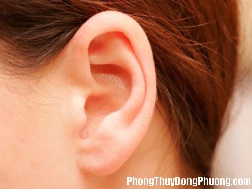 tai Giải mã các bí ẩn giấc mơ thấy tai của mình