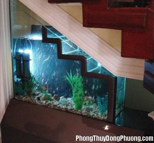 nhung dieu can biet khi dat be ca o gam cau thang1 Có nên tận dụng gầm cầu thang làm bể cá không ?