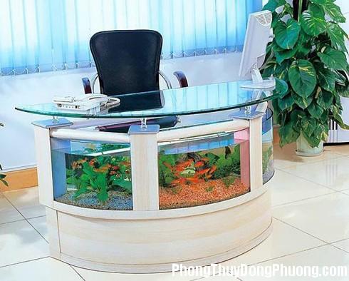 phong thuy 10 mau Cách đặt bể cá trong phòng làm việc mang lại may mắn