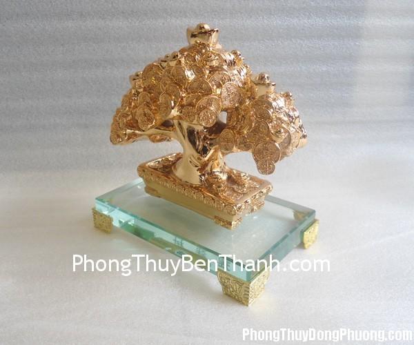 h512g cay rung tien 1 Tử vi Phương Đông tuần từ 17/8/2015 – 23/8/2015
