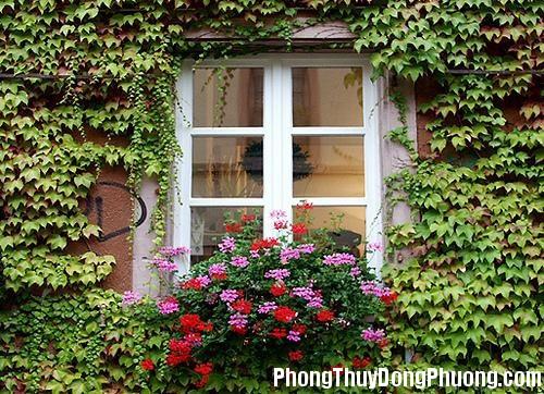 20141117073839899 Lưu ý phong thủy khi bài trí cửa sổ