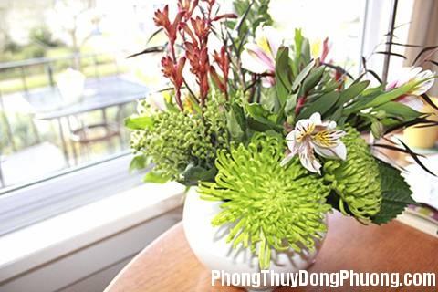 D9F cachdunghoatuoi Cách chưng hoa hút tài vận vào nhà