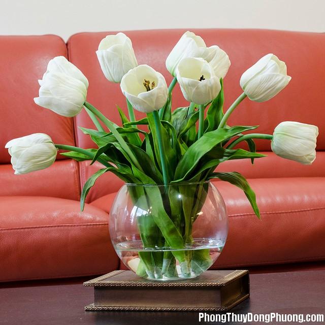 01 1369 Những loại hoa không nên đặt ở những vị trí nhất định trong nhà