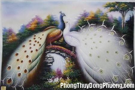 31 DOOL TT 120525 HT6 4 Ý nghĩa phong thủy của lông chim công