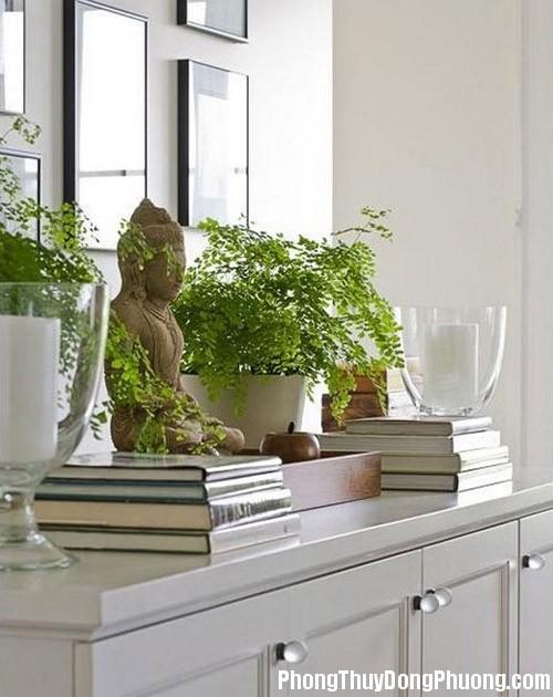 ferns1985532 59a1 Không nên thờ quá nhiều tượng Phật trong nhà