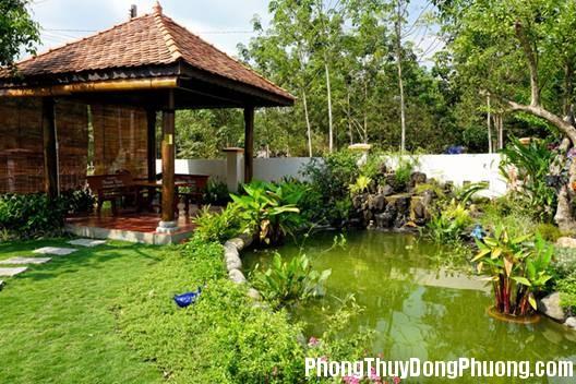 102232baoxaydung 4 1430911657 Bố trí cây xanh, mặt nước trong nhà ở