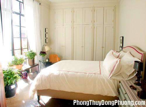 lam an trac tro vi de nhieu cay xanh trong phong ngu 1 Phòng ngủ quá nhiều cây xanh gây cản trở công việc làm ăn
