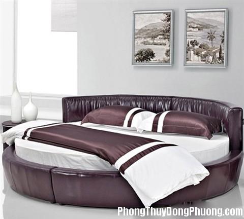 hinh tron 1354098879 Vì sao phòng ngủ hình tròn lại khó ngủ ?