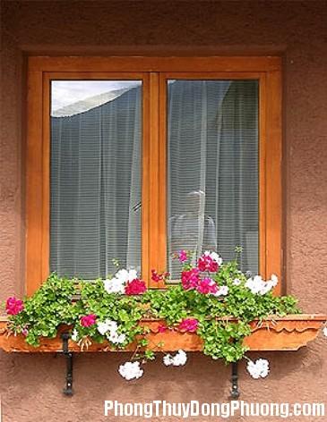 vuon treo ben cua so13 Những lưu ý phong thủy khi bố trí cửa trong nhà