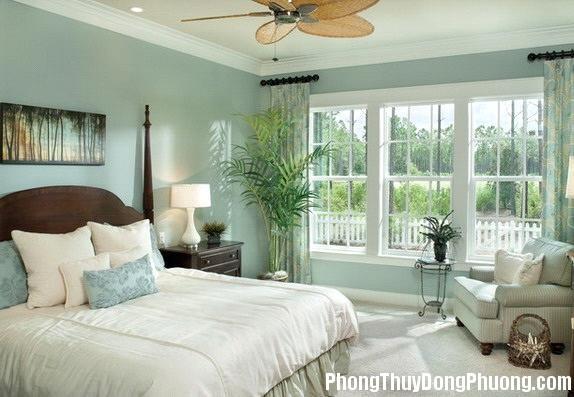 48 b35d Bí quyết đặt cây cảnh trong phòng ngủ mà không phạm kị phong thủy