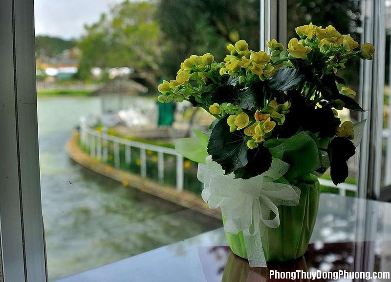 vi tri dat hoa trong nha phunutoday 1042 Nên bài trí lọ hoa ở đâu để được nhiều tài lộc trong năm 2017