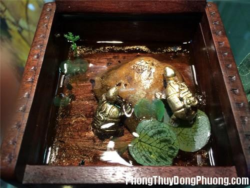 20151020015248955 Biểu tượng Rùa trong phong thủy: Công danh và tiền tài chậm mà chắc