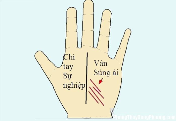 BCLBZH 20161017 muon biet hon nhan hanh phuc co nao hay xem duong vay tay sung ai Muốn biết hôn nhân hạnh phúc cỡ nào thì hãy xem đường vân tay Sủng ái