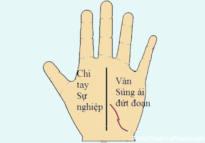 Uyljov 20161017 muon biet hon nhan hanh phuc co nao hay xem duong vay tay sung ai Muốn biết hôn nhân hạnh phúc cỡ nào thì hãy xem đường vân tay Sủng ái
