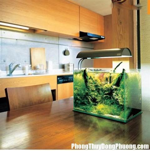 phong thuy khac phuc be ca doi dien bep 31574 nlju Những vị trí tuyệt đối nên tránh khi đặt bể cá trong nhà