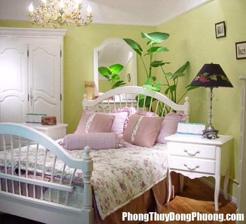 pt5 Hạn chế đặt nước và cây xanh trong phòng ngủ, vì sao?