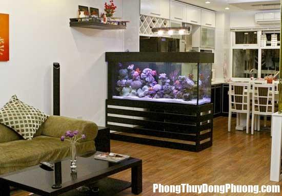 24 2 Cách dùng bể cá để hạn chế tán khí cho nhà ở