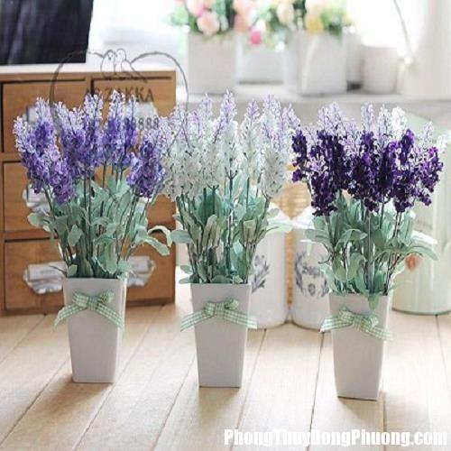 hoa gia dao hoa gia.png Nếu muốn thúc vận đào hoa thì không nên bày hoa giả trong phòng ngủ
